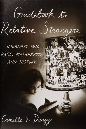 Guidebook to Relative Strangers book cover