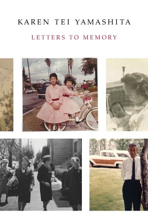 Letters to Memory book cover