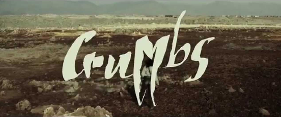 "the words ""Crumbs"" in jagged white text over a ruined, empty vista"