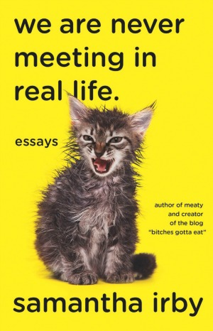 We Are Never Meeting in Real Life book cover