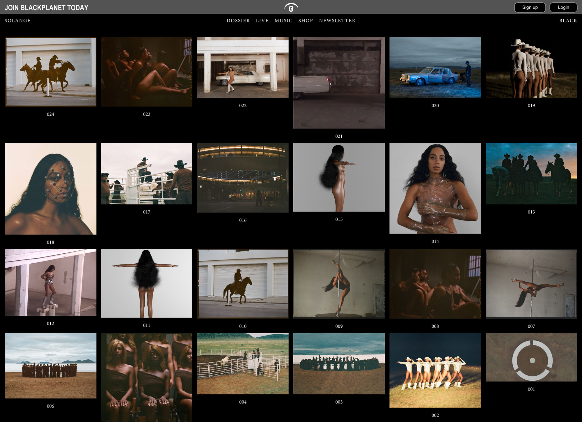 "Solange's profile page on BlackPlanet.com during the launch of her latest album, ""When I Get Home"" featuring various thumbnails from her visual album"