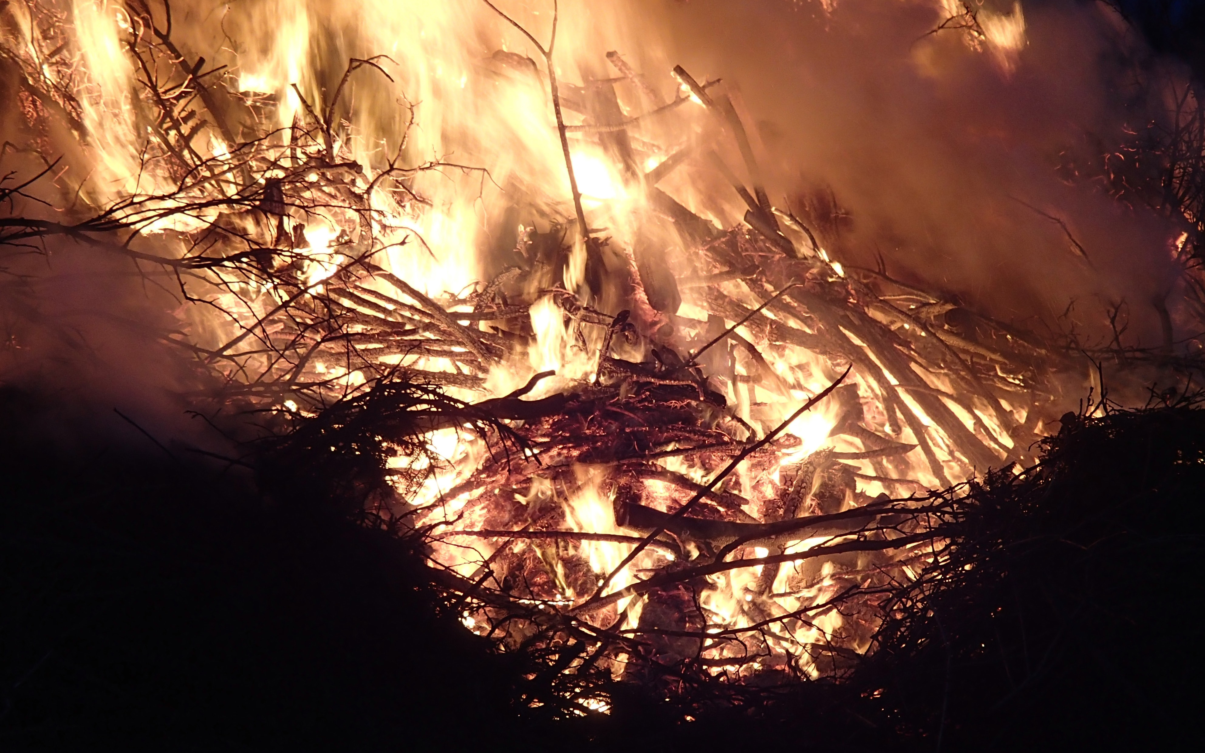 Sticks and logs burning in a fire
