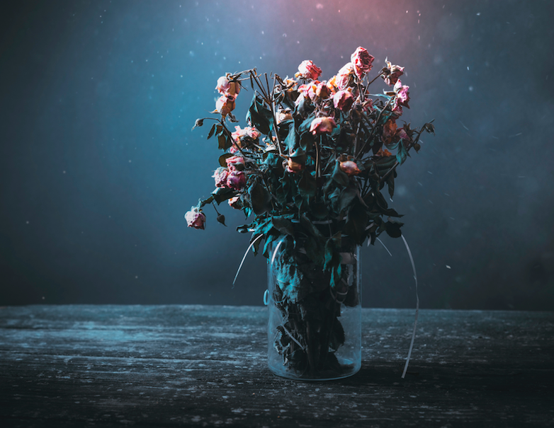 vase of dying pink roses on a table against a dark background