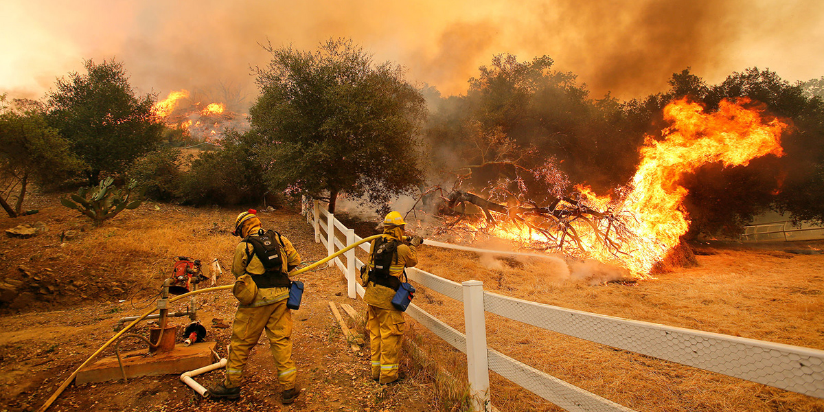 California firefighters using a fire hose to put out a burning forest as smoke fills the air