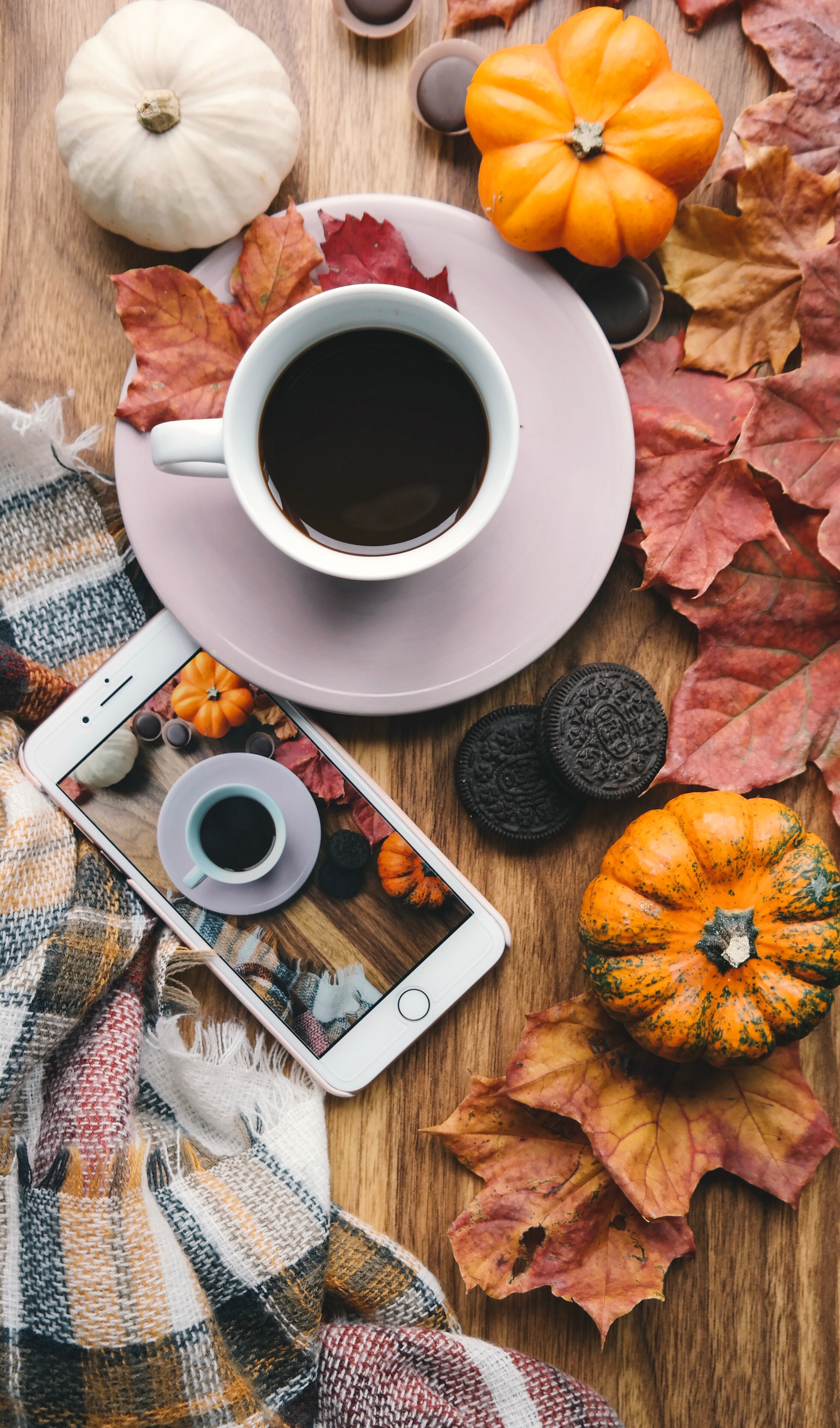 A pumpkin, cup of coffee and a phone with the image of the pumpkin and coffee sit on a table