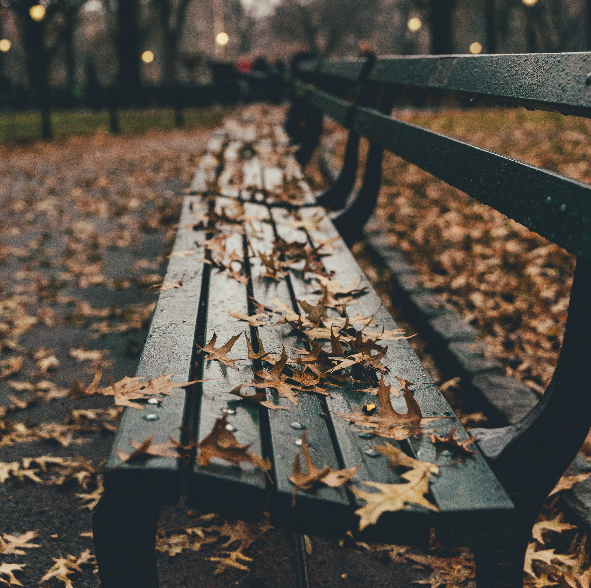 a photo of a park bench covered in orange leaves