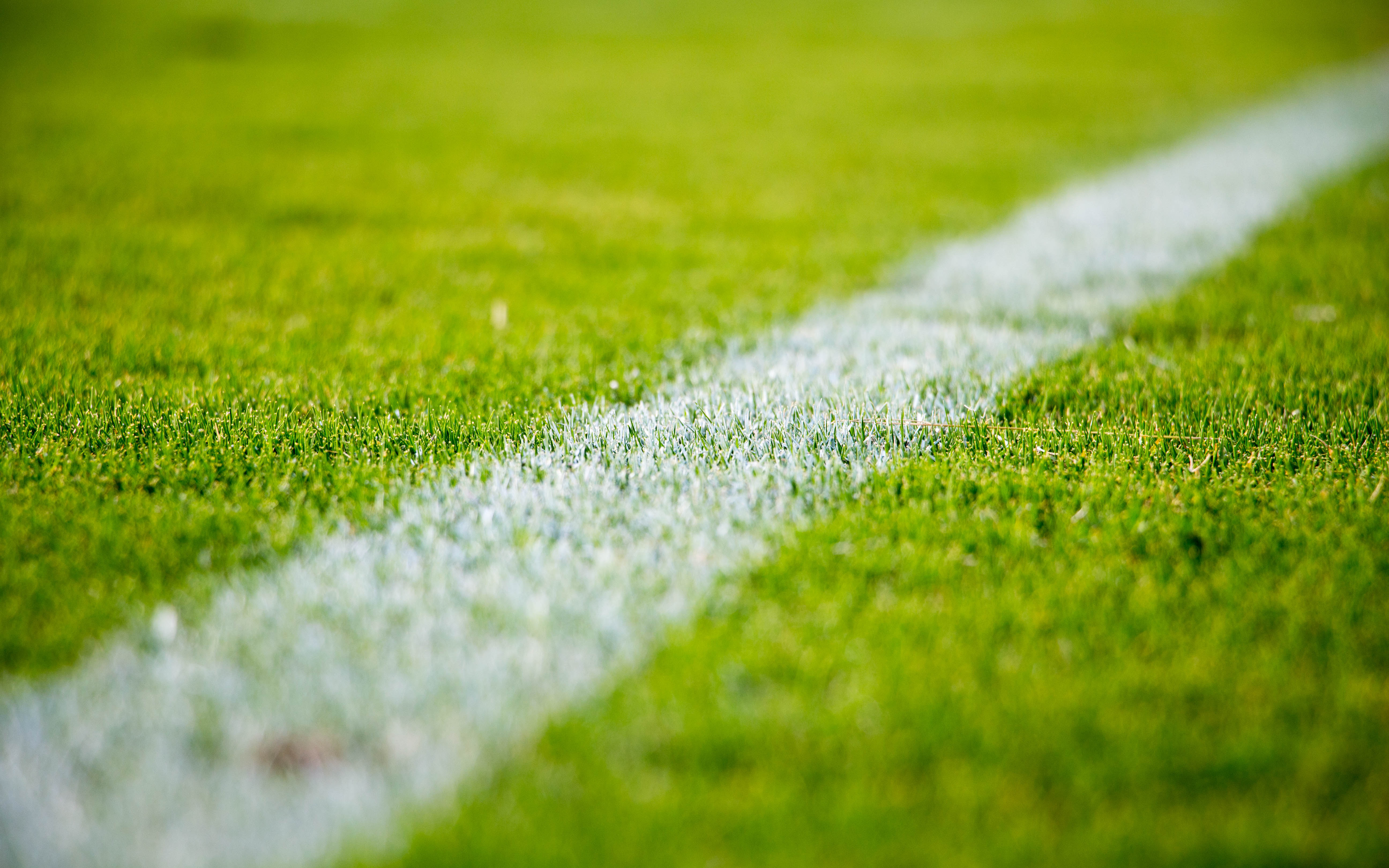 White soccer line painted on grassy field