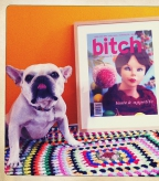 A framed Taste & Appetite print on a colorful rug next to a bulldog.