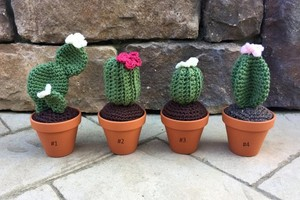 crotchet cactus knit plants