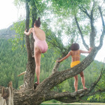 two young thin women are climbing trees above a lake