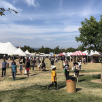 A crowd of people on a grassy area at the Gilroy Garlic Festival, numerous tents in the background