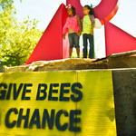children wearing bee costumes stand above a yellow Give Bees a Chance sign