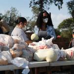 Volunteers prepare bags of food at a drive-thru site.