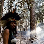 Tamikua Txihi stands in front of a burnt out forest area in Pico do Jaraguá, Brazil.