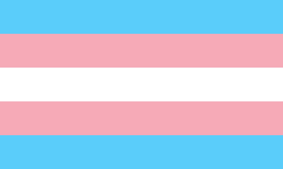 a pink, white, and blue flag that represents transgender pride