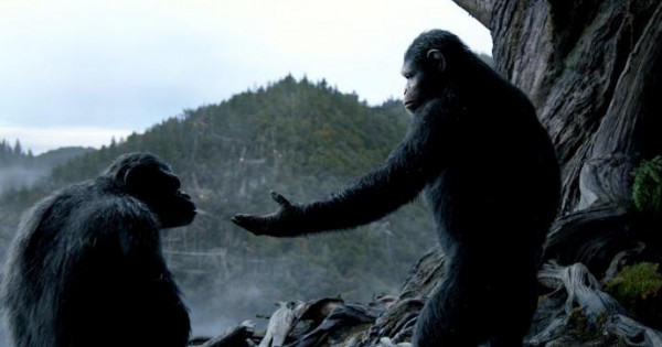 rise of the planet of the apes subtitles for sign language parts