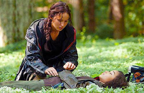 katniss places flowers around rue's body after she dies in the hunger games